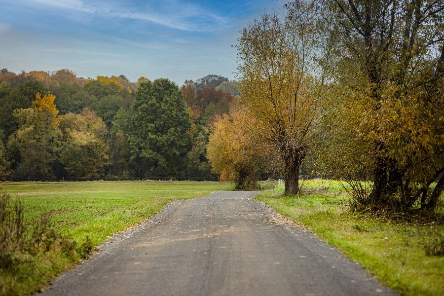 Szlak pieszo-rowerowy Mysiakowiec - Grotowice