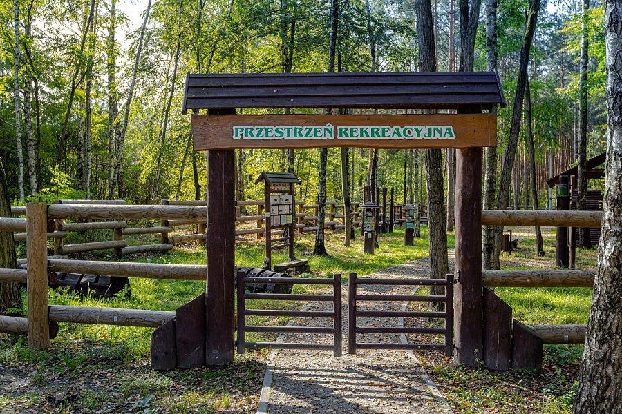 """Park edukacyjno-rekreacyjny """"Edukacja leśna"""""""